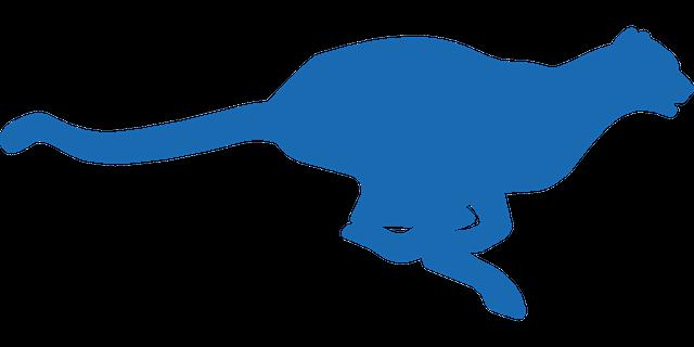 cheetah blue 1 tiny